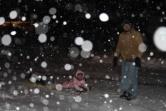 Chloe's New Winter Hobby