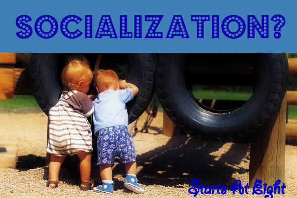 child socialization As early as first or second grade, children form social groups in these early peer groups, children learn to share toys and other scarce resources.