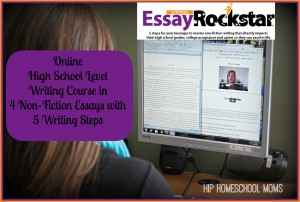 Essay Rock Star Course Review
