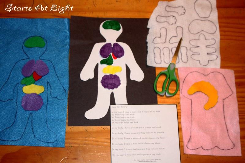 My Body ~ Felt Board Activity