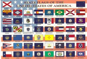 msc-1118-State Flags