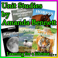 Unit Studies By Amanda Bennett