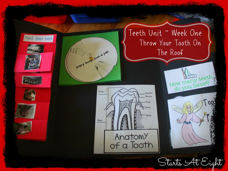 Teeth Unit Week 1 Throw Your Tooth on the Roof