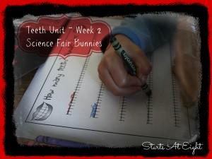 Teeth Unit Week 2 Science Fair Bunnies