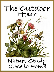 HandbookofNaturebutton