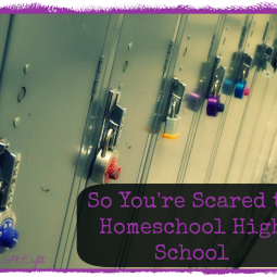 So You're Scared to Homeschool High School