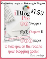 iBlog Pro eBook: Taking Your Blog to the Next Level