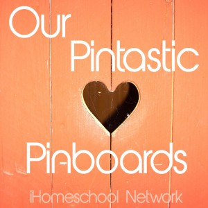 Pintastic Pin Boards from iHN Bloggers