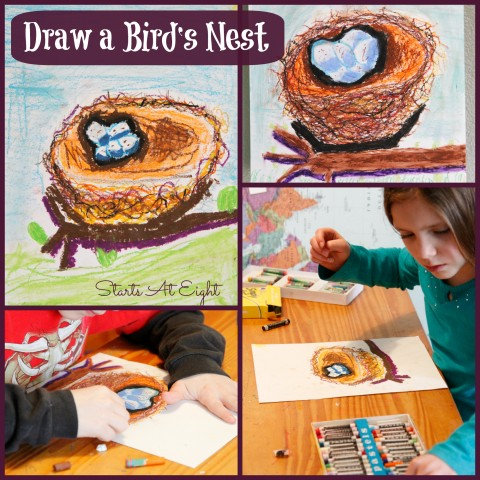 Draw a Bird's Nest ~ Spring Nature Study