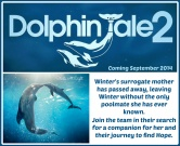 Dolphin Tale 2 – Trailer & Unit Study Resources