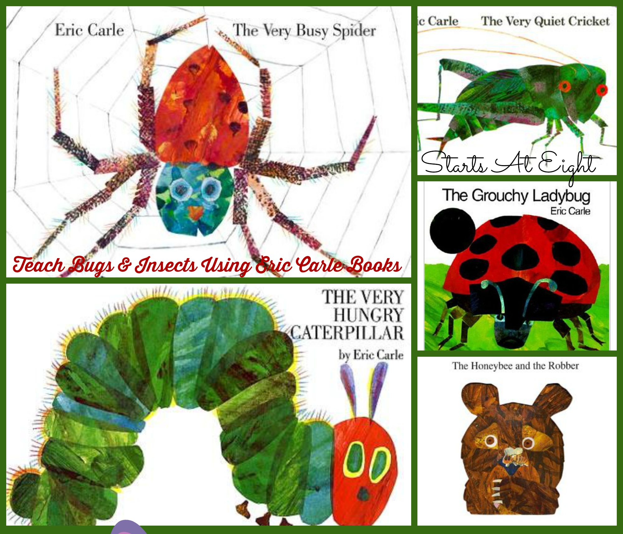 teach bugs and insects using eric carle books startsateight