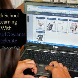 High School e-Learning With Standard Deviants Accelerate