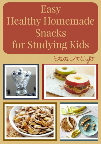 Easy Healthy Homemade Snacks for Studying Kids from Starts At Eight