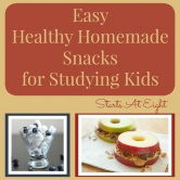 Easy Healthy Homemade Snacks for Studying Kids