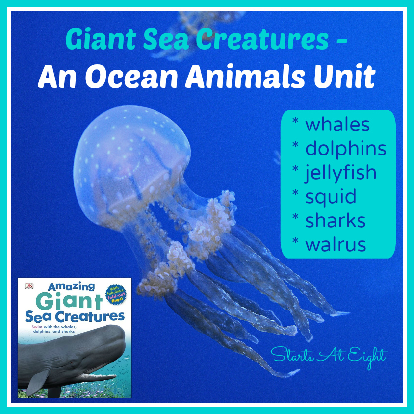 Giant Sea Creatures ~ An Ocean Animals Unit from Starts At Eight