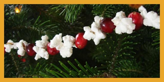 Popcorn Cranberry String