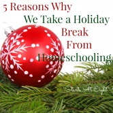 5 Reasons Why We Take a Holiday Break From Homeschooling