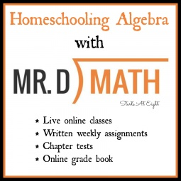 Homeschooling Algebra With Mr. D Math