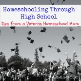Homeschooling Through High School – Tips from a Veteran Homeschool Mom