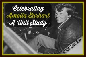Celebrating Amelia Earhart - A Unit Study