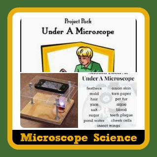 Microscope Activities on Pinterest