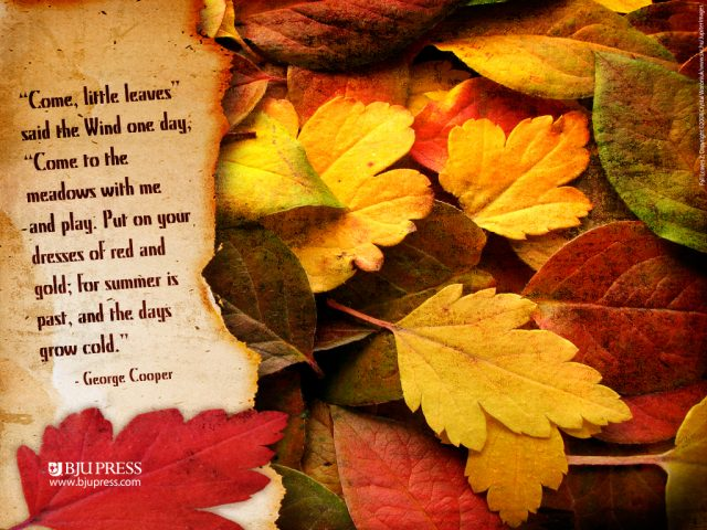 Fall Leaves Poetry