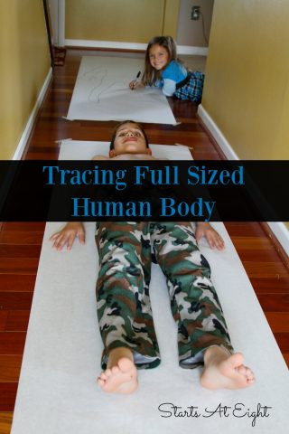 tracing-full-sized-human-body
