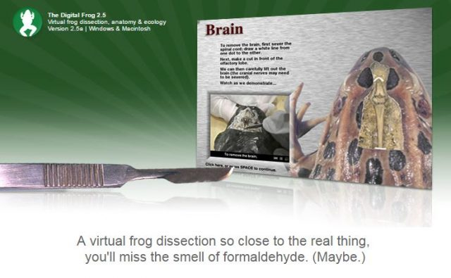 virtual frog dissection resources startsateight Frog Dissection Mouth the digital frog 2 5 engages students with an interactive virtual dissection allowing the student to learn each of the cuts necessary by cutting with a