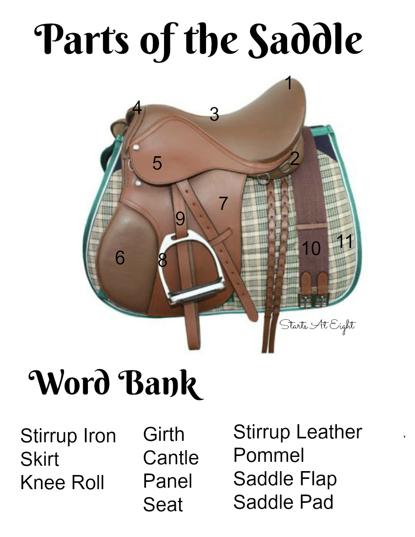 Parts of the Saddle Printable from Starts At Eight