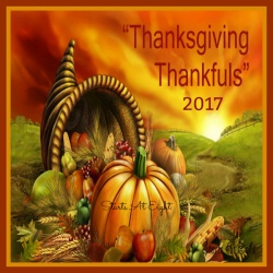 Thanksgiving Thankfuls 2017 – Reflecting on the Gifts of This Year