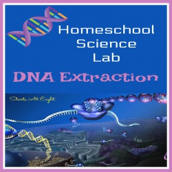 Homeschool Science Lab: DNA Extraction Lab