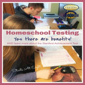 Homeschool Testing – Benefits and Using the Stanford Achievement Test
