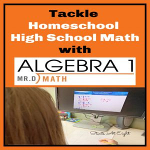 Tackle Homeschool High School Algebra with Mr. D Math! Mr. D Math offers online live or self-paced courses for high school math, Test Prep, ASL, and more! A review from Starts At Eight