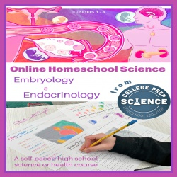 Online Homeschool Science: Embryology and Endocrinology