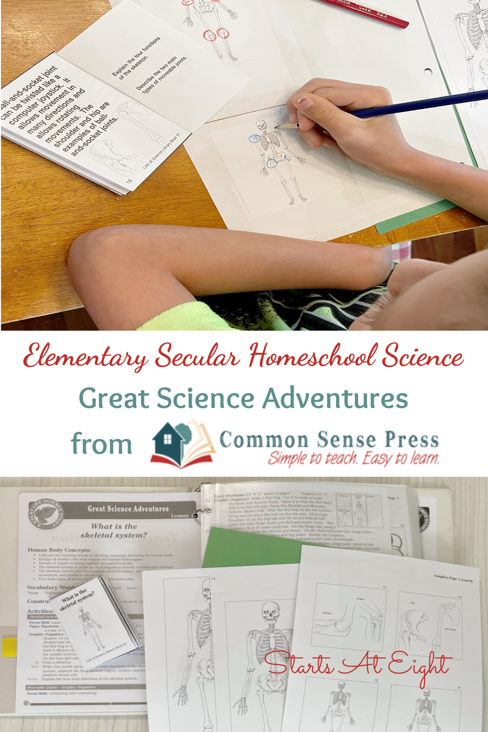Great Science Adventures from Common Sense Press are easy to use, elementary secular homeschool science programs that can be used with multiple ages! This is a review of the Discovering the Human Body and Senses from Starts At Eight