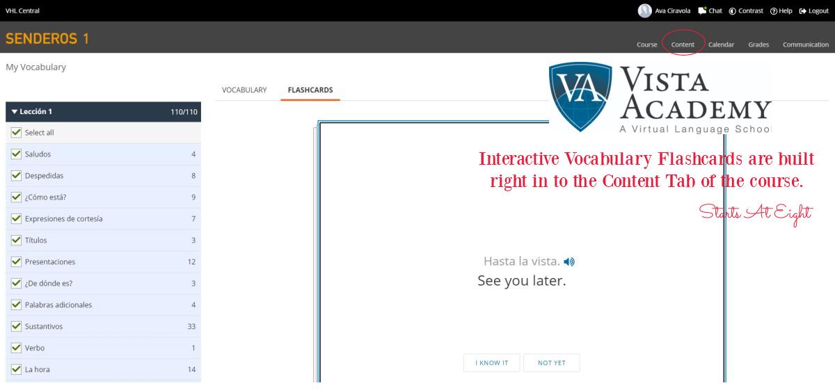 Vista Academy Spanish Vocabulary Flashcards